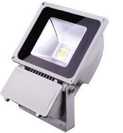 100W Outdoor LED Floodlight